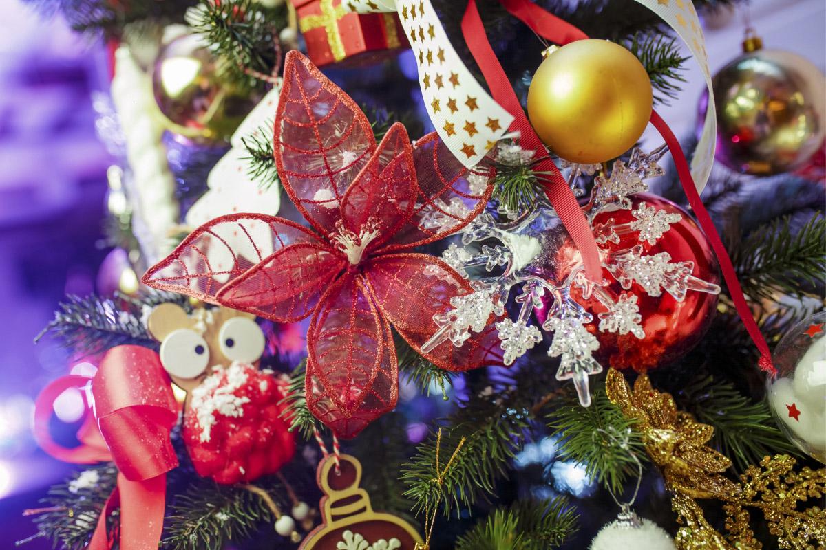 Проект Семейное рождество фото au6b5708_1